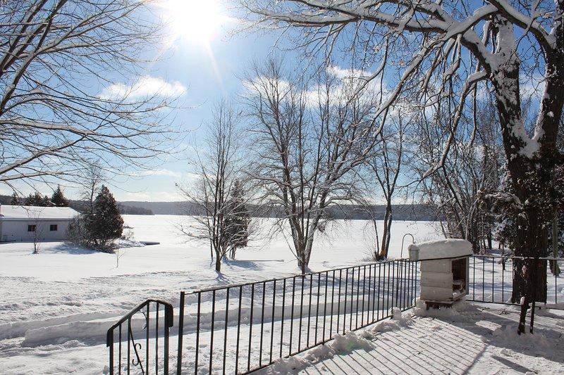 coltre di neve copre terreno in inverno