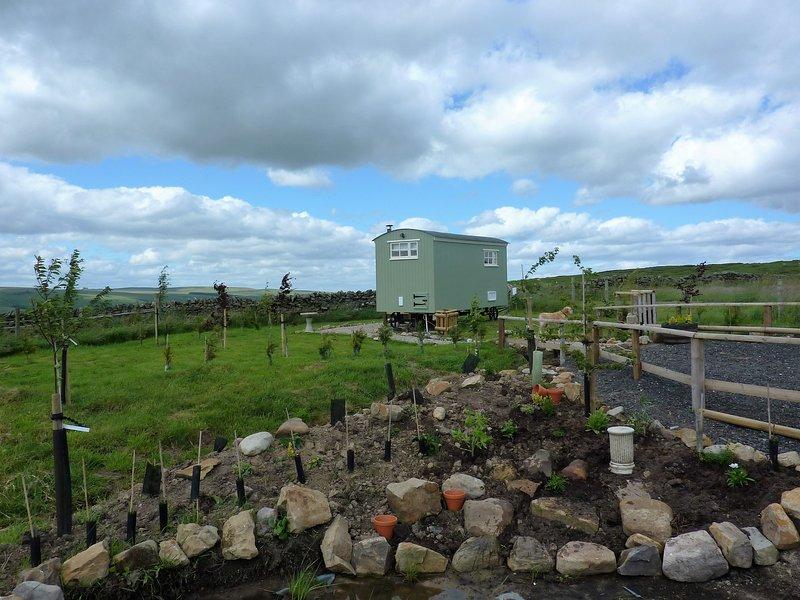 Rosie The Buteland Stop, Off grid  Shepherds Hut. Bellingham, Northumberland, holiday rental in Greenhaugh