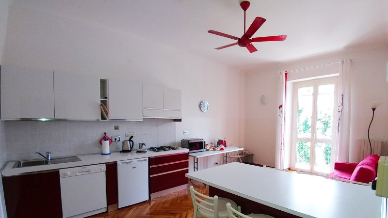 Kitchen with dishwasher / Ceiling fan