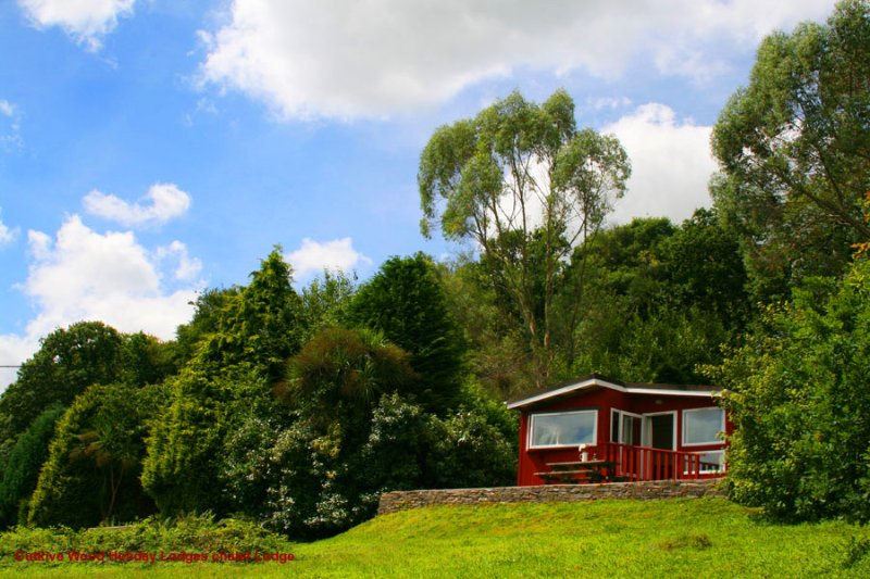 Owl Lodge at Cutkive Wood