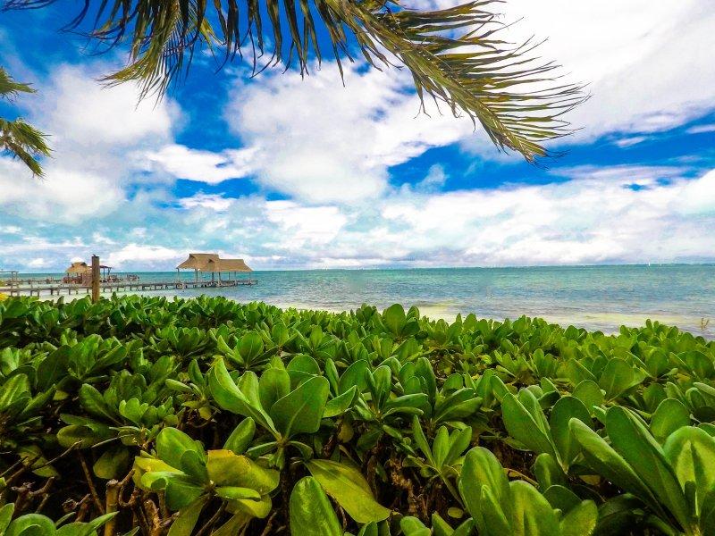 Suite Mexican beach front condo, location de vacances à Punta Sam