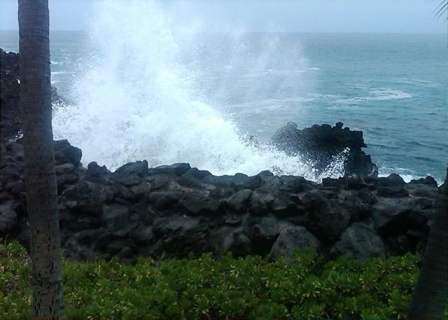 Steps from Ocean
