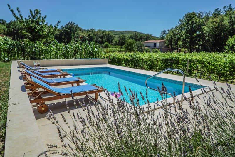 ... l'ambiente intorno alla piscina è sensazionale ...
