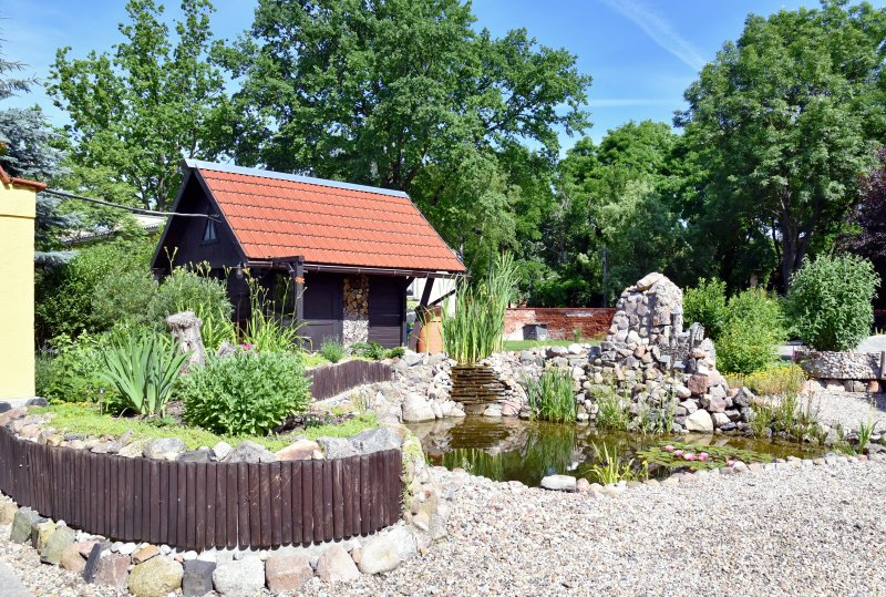Garden with koi pond, garden shed