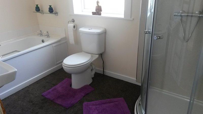 The bathroom consists of walk in shower, bath, toilet and handbasin