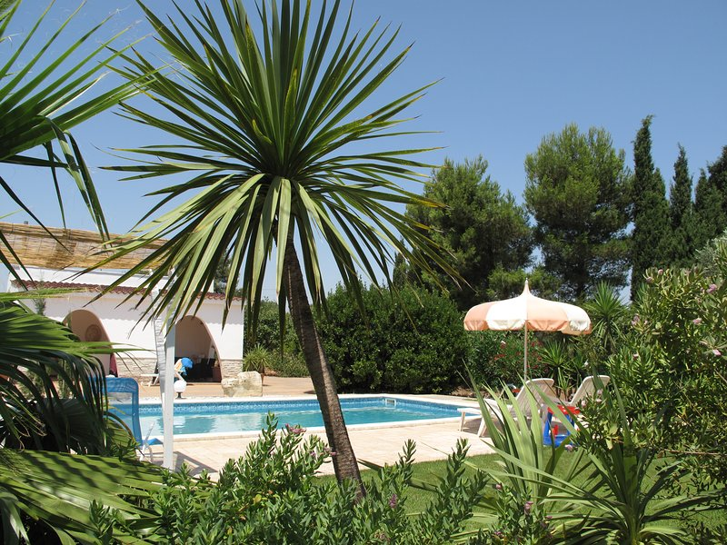 Villa TaLu -WiFi Internet-privat pool and garden, holiday rental in San Vito dei Normanni
