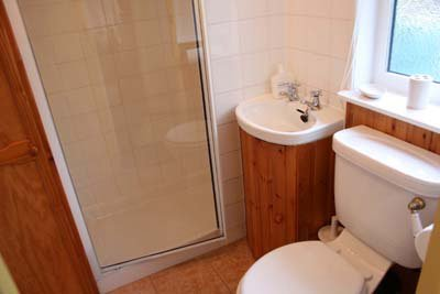 Il bagno con doccia al piano di sotto ha un ampio box doccia.