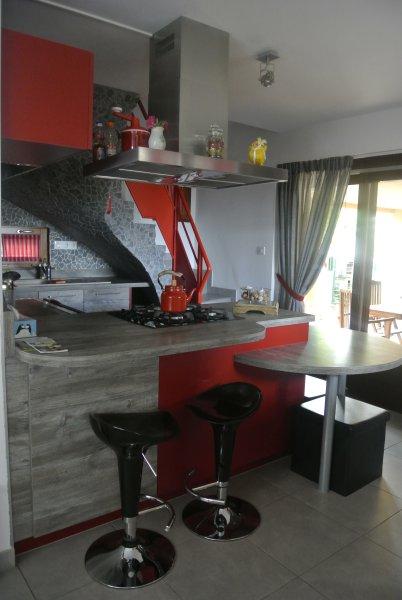 Gîte rouge au coeur du vignoble Alsacien, holiday rental in Rorschwihr