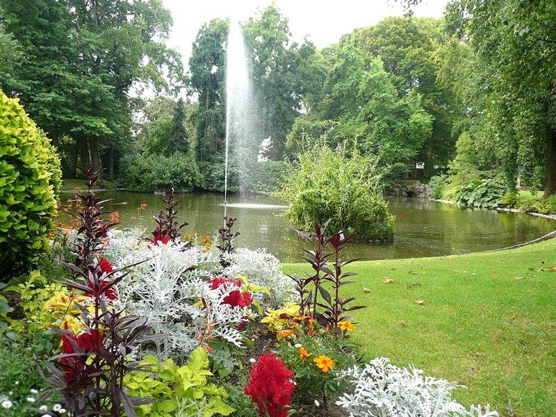 Jardim Botânico: Descubra este belo jardim de flores e pássaros livres