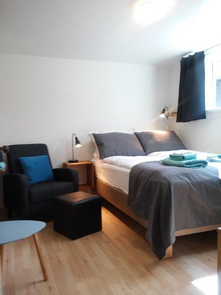Main Street, X-small, own kitchen and bathroom., aluguéis de temporada em Reykjavik