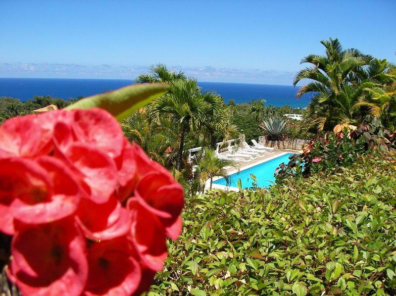 Quiet location in a beautiful tropical garden and stunning sea views