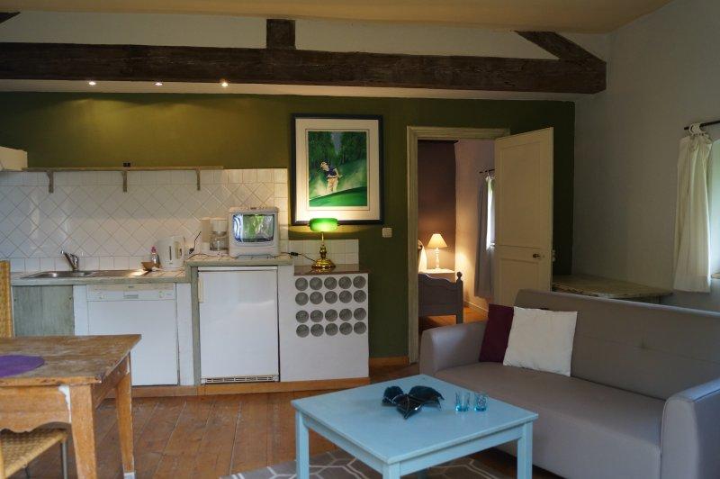 Gola apartamento sala de estar con cocina equipada