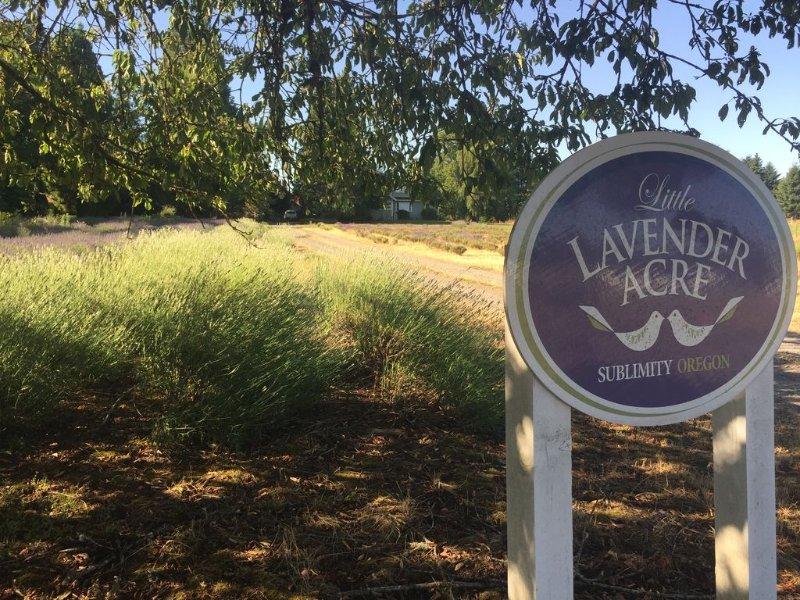 Little Lavender Acre - Historic Farmhouse on Lavender Farm in Willamette Valley, vacation rental in Silverton