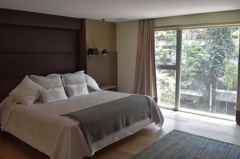 PH in Polanco with amenities, vacation rental in Mexico City
