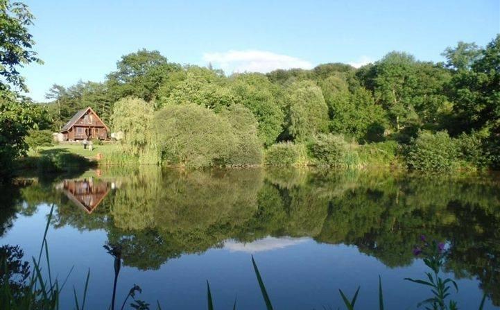 Kingfisher Lodge från preparat sjön