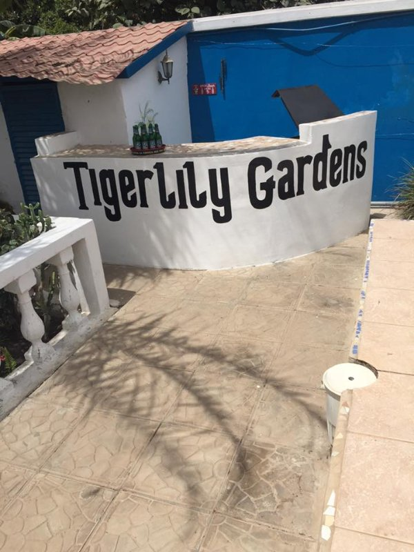 Tigerlily has a bar and BBQ. We can stock the bar for you or bring your own drinks