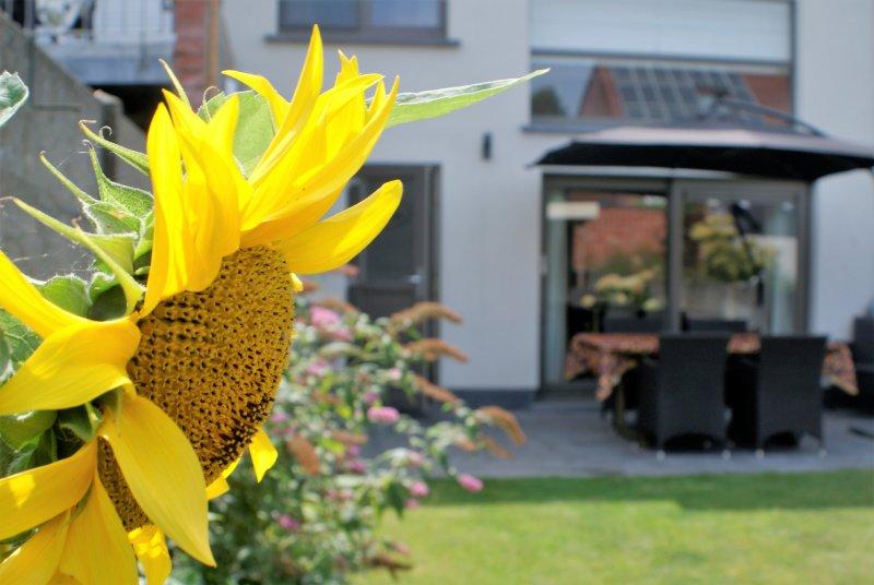 Bed and Breakfast Klinkaart, location de vacances à Malines