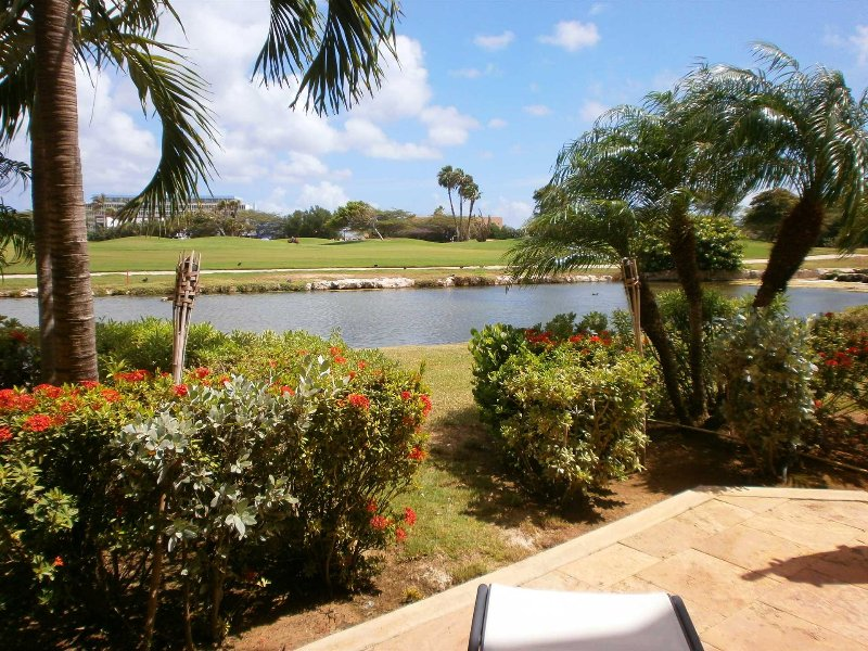 Your picturesque serene landscaping view of the 9-hole golf course!