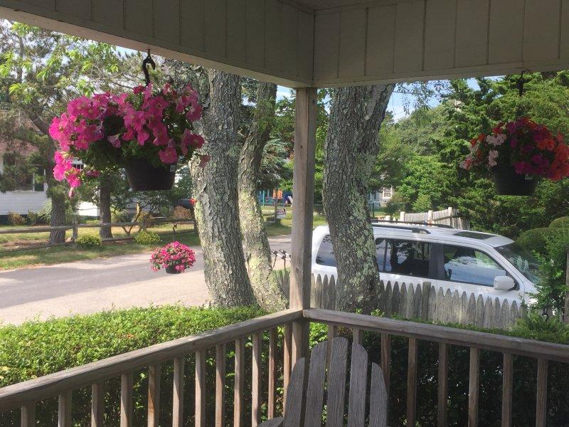 Vista dal portico anteriore guardando strada