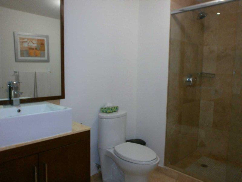 'En suit' master bathroom with shower