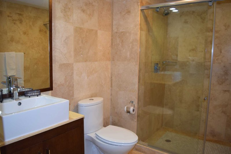 Master en-suite full bathroom