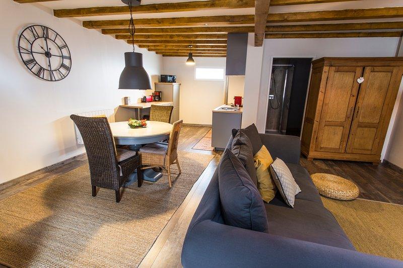Grand et moderne appartement 3 pièces sur la route des vins - Le Pignon, location de vacances à Strasbourg