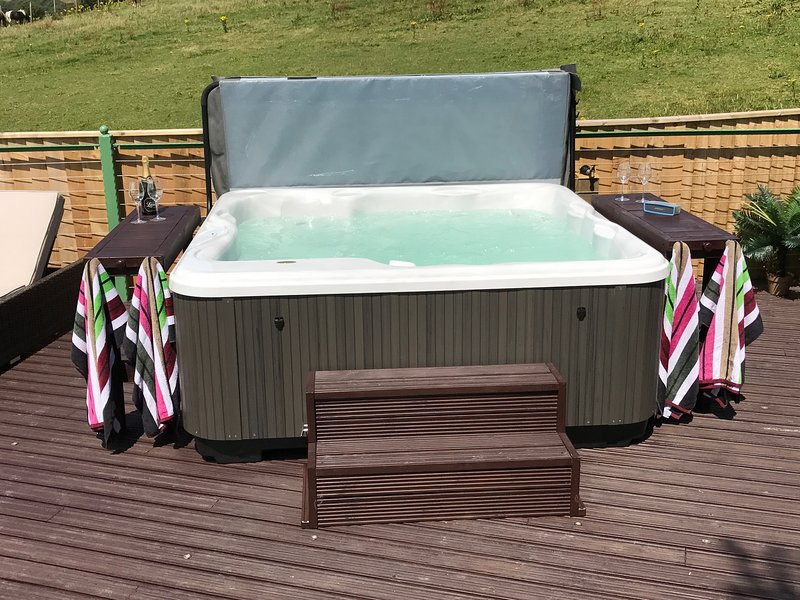 Jacuzzi hot tub for 5-6 people.
