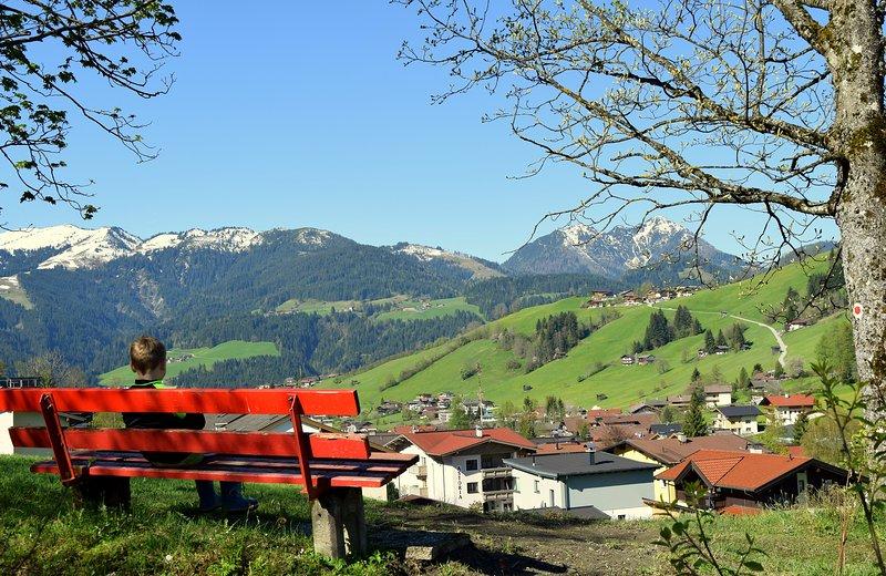 apartment wildschoenau tyrol austria kitzbuehel alps holidays skiing big apartment for 11 persons