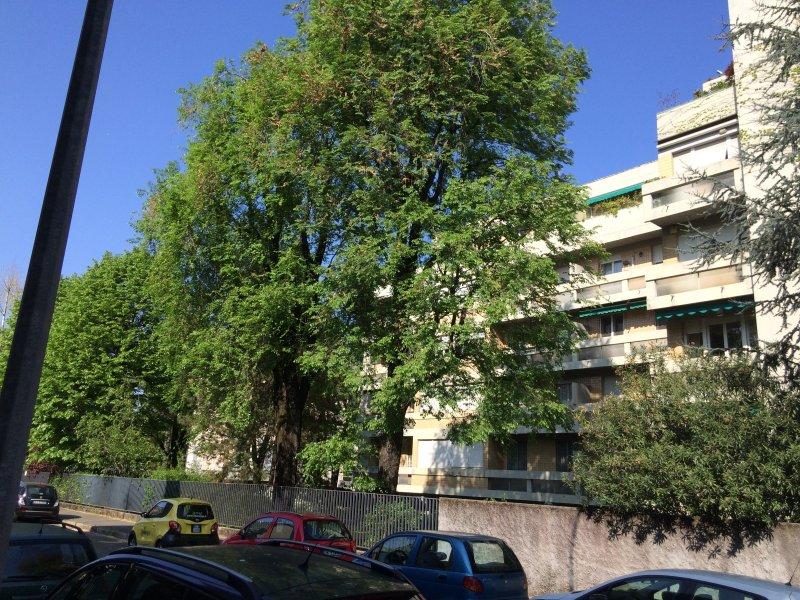 Seitenansicht des Gebäudes von der Via Porro