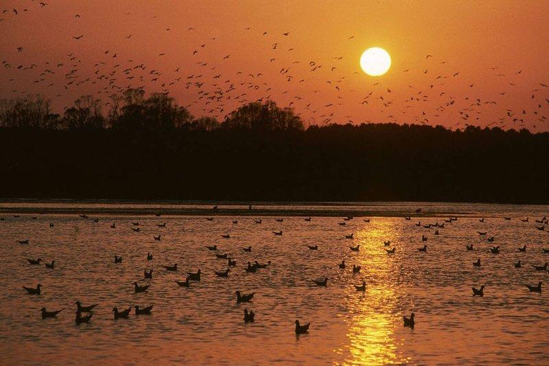 The sunset on the lagoon of Orbetello