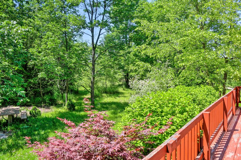 Spend hours relaxing outside, listening to birds chirping, and enjoying the views of the surrounding the trees.