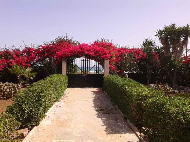Big house with sea view & terrace, holiday rental in Granelli
