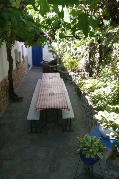 ¿Estás listo para la barbacoa y todo lo come fuera juntos bajo la terraza cubierta de vid?