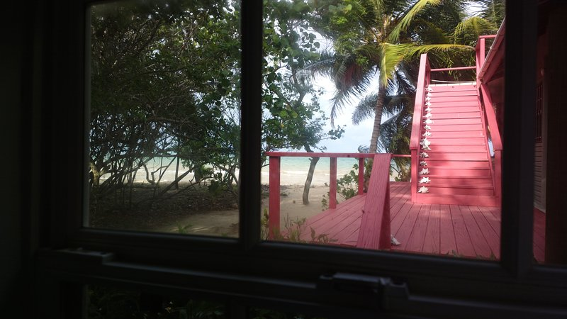 La vista desde la ventana de la cocina.
