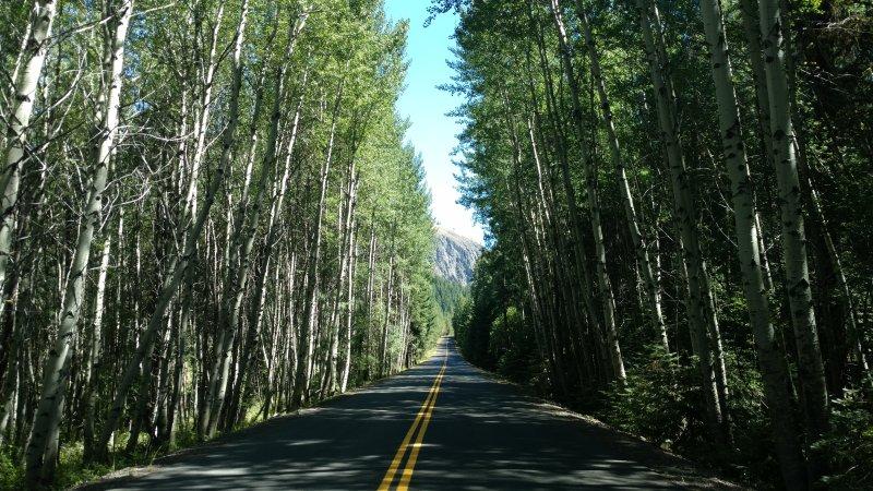 Malerische Fahrten durch den nationalen Wald nur wenige Minuten von der Kabine