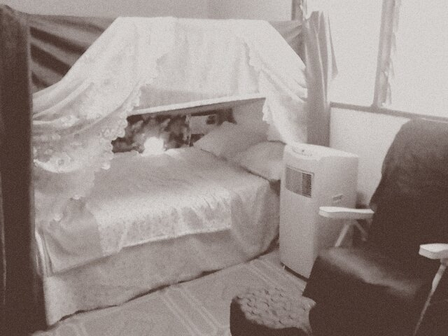 solo room,soft bed