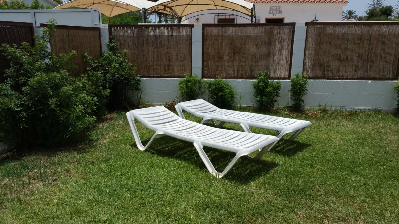 Garden with sunloungers