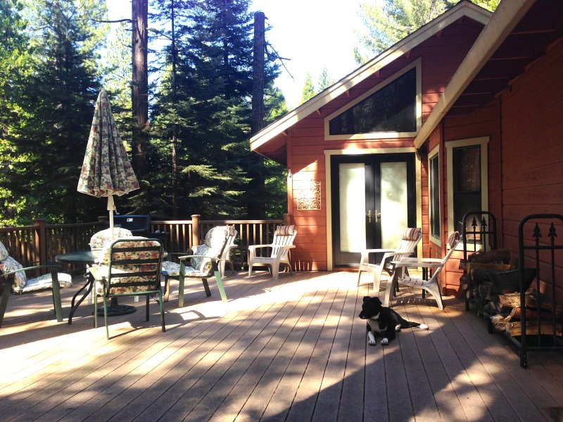 Large shady, fully enclosed deck - great for people and dogs to relax