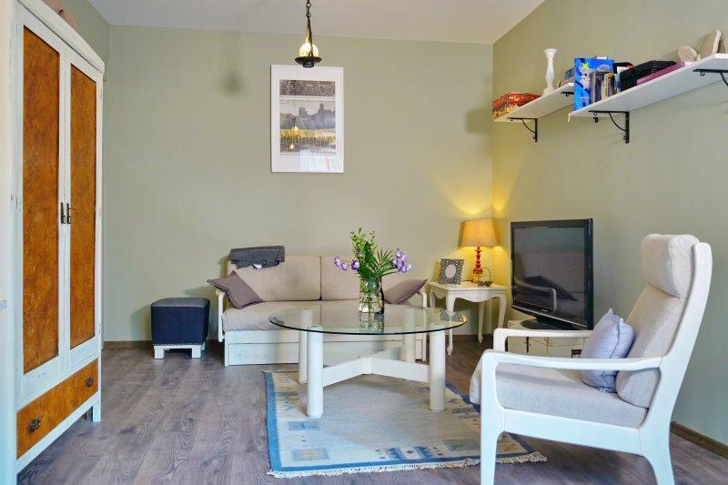 The Bookies Apartment, vacation rental in Vladaya