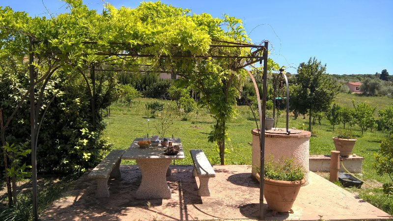Lovely apartment surrounded by nature, location de vacances à Ossi