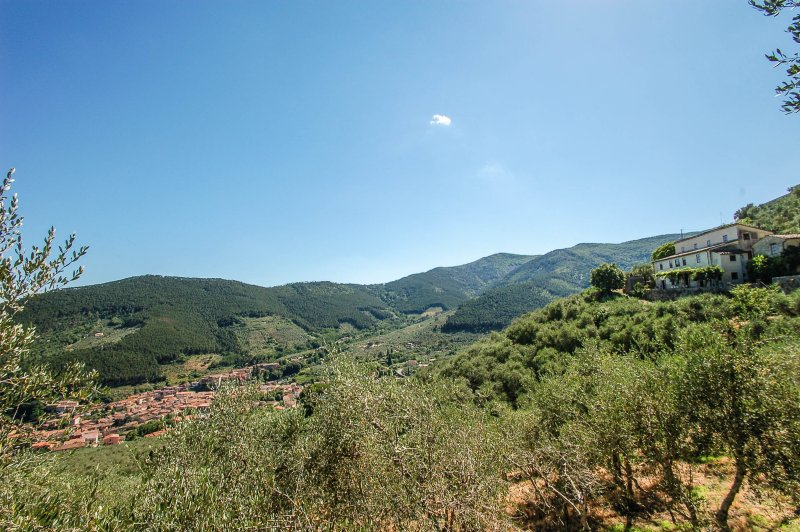 Detached villa with private pool 2km from village, 30 km from sea. Great views!!, holiday rental in Buti