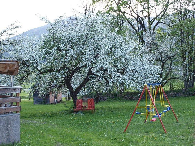 gunga för barnen i trädgården i närheten av stugan