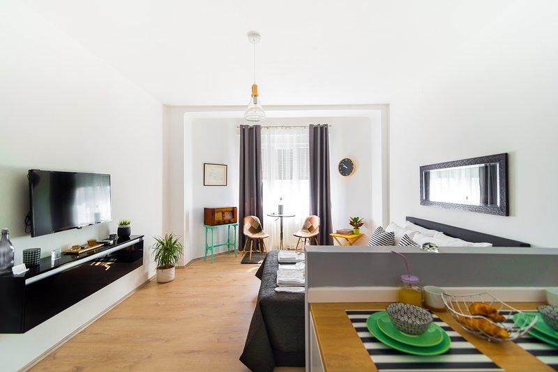 Polai Panorama Center apartments, vacation rental in Pula