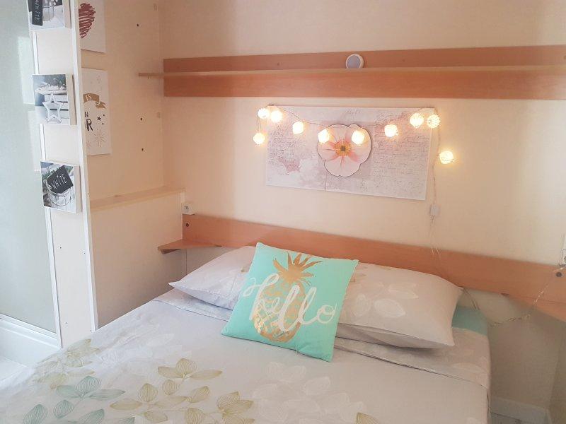 Large bedroom Vanity wash area Plenty of wardrobd space En Suite Shower
