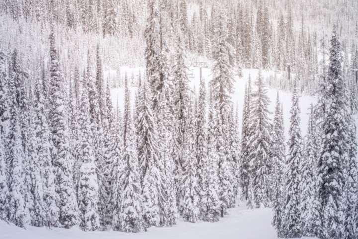 Aspen y Snowmass son los mejores destinos de vacaciones de esquí. Vacaciones iTrip Aspen Snowmass tiene una amplia gama de opciones de alquiler de vacaciones.