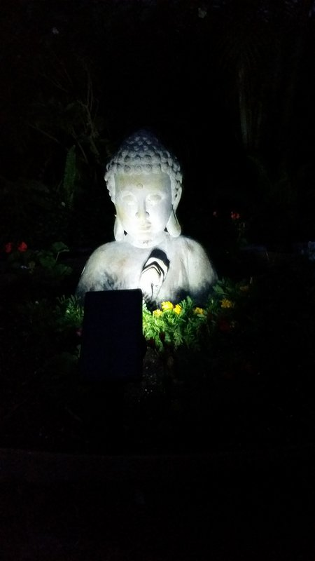 Hinterhof Buddha.