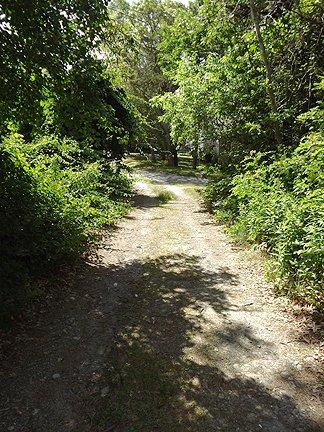 Path to Ridgevale Beach