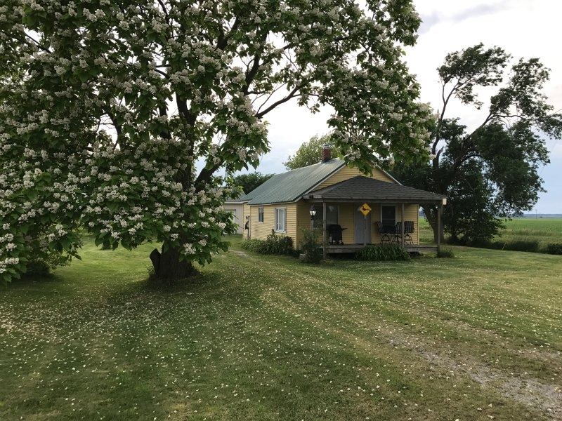 Cabin Near Fish Point, holiday rental in Cass City