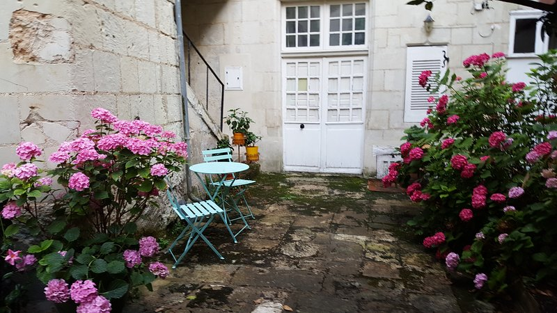ROMANTIC CHARMING APT OUTSTANDING CHINON LOCATION, holiday rental in La Roche-Clermault