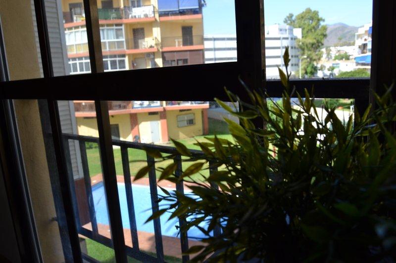 Blick auf den Pool / Vistas de la piscina